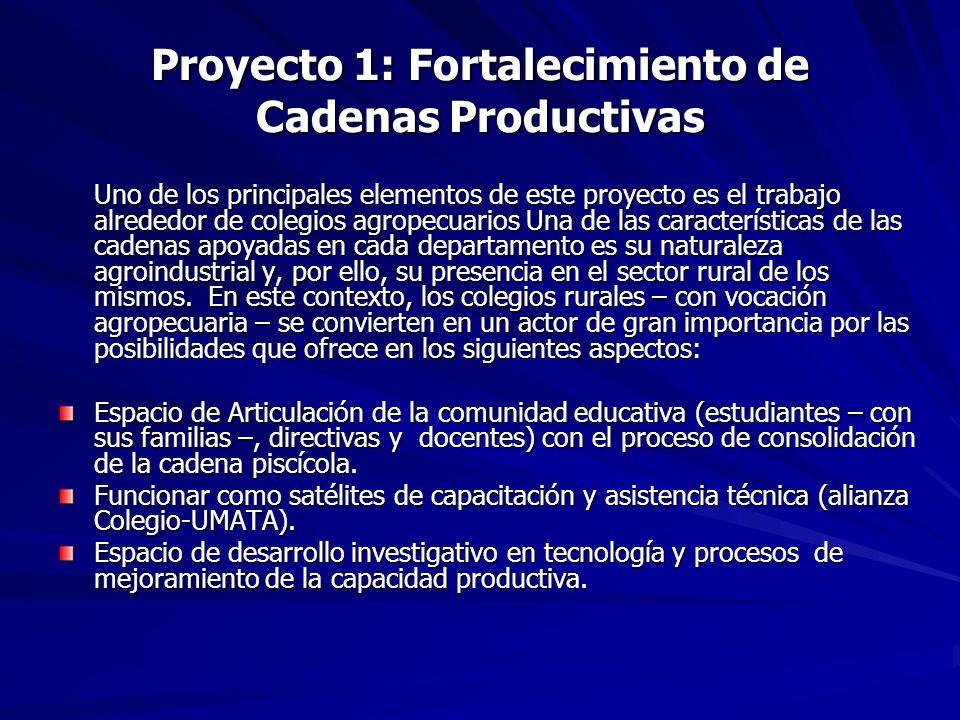 Proyecto 1: Fortalecimiento de Cadenas Productivas Uno de los principales elementos de este proyecto es el trabajo alrededor de colegios agropecuarios