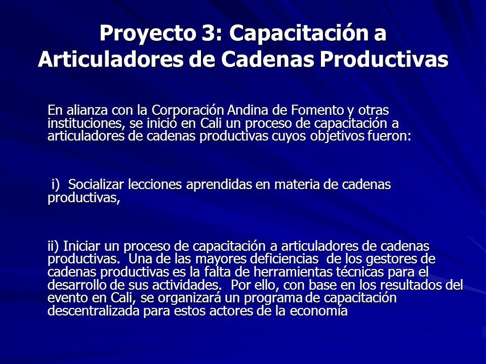Proyecto 3: Capacitación a Articuladores de Cadenas Productivas En alianza con la Corporación Andina de Fomento y otras instituciones, se inició en Ca