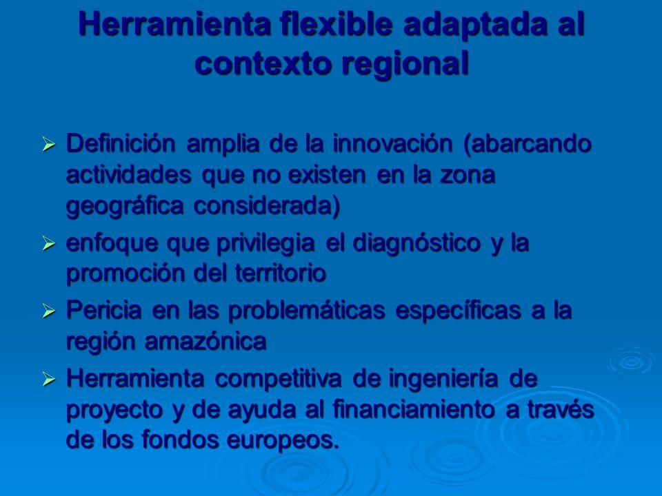 Herramienta flexible adaptada al contexto regional Definición amplia de la innovación (abarcando actividades que no existen en la zona geográfica considerada) Definición amplia de la innovación (abarcando actividades que no existen en la zona geográfica considerada) enfoque que privilegia el diagnóstico y la promoción del territorio enfoque que privilegia el diagnóstico y la promoción del territorio Pericia en las problemáticas específicas a la región amazónica Pericia en las problemáticas específicas a la región amazónica Herramienta competitiva de ingeniería de proyecto y de ayuda al financiamiento a través de los fondos europeos.