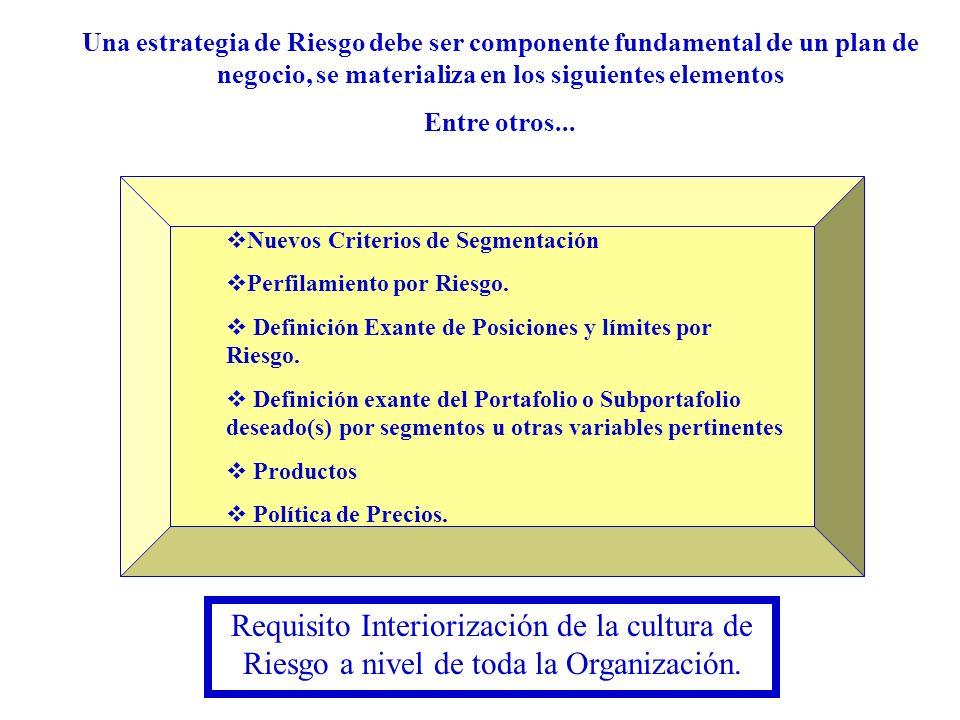 Una estrategia de Riesgo debe ser componente fundamental de un plan de negocio, se materializa en los siguientes elementos Entre otros... Nuevos Crite