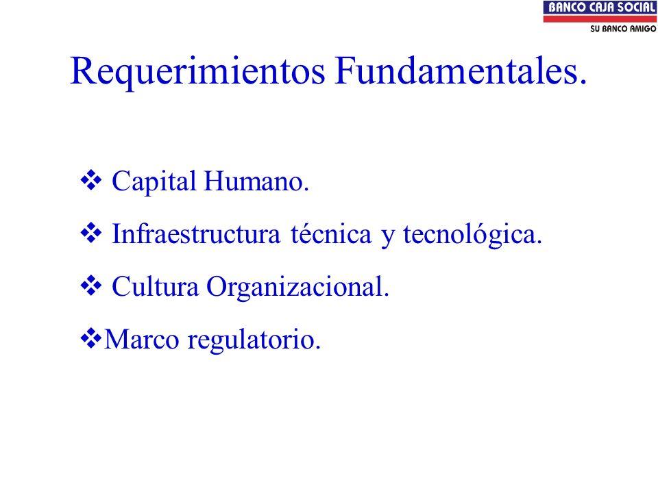 Requerimientos Fundamentales. Capital Humano. Infraestructura técnica y tecnológica. Cultura Organizacional. Marco regulatorio.