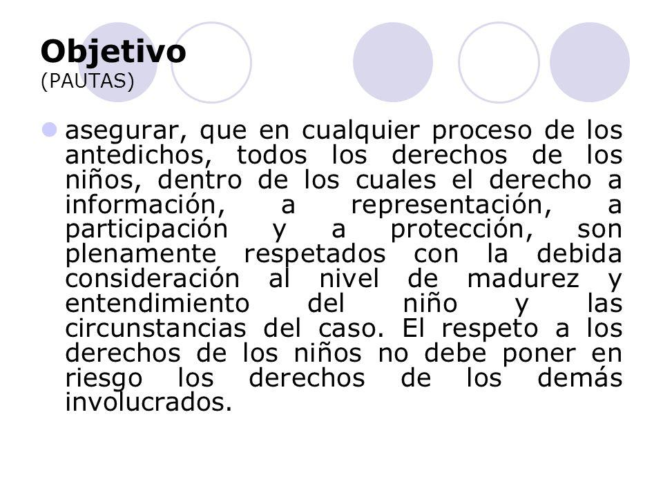 Objetivo (PAUTAS) asegurar, que en cualquier proceso de los antedichos, todos los derechos de los niños, dentro de los cuales el derecho a información, a representación, a participación y a protección, son plenamente respetados con la debida consideración al nivel de madurez y entendimiento del niño y las circunstancias del caso.