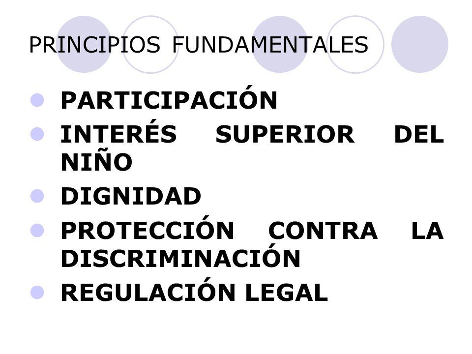 PRINCIPIOS FUNDAMENTALES PARTICIPACIÓN INTERÉS SUPERIOR DEL NIÑO DIGNIDAD PROTECCIÓN CONTRA LA DISCRIMINACIÓN REGULACIÓN LEGAL