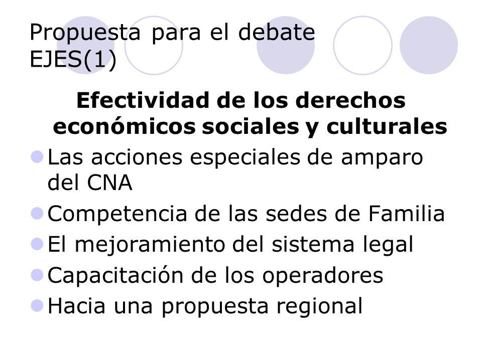 Propuesta para el debate EJES(1) Efectividad de los derechos económicos sociales y culturales Las acciones especiales de amparo del CNA Competencia de