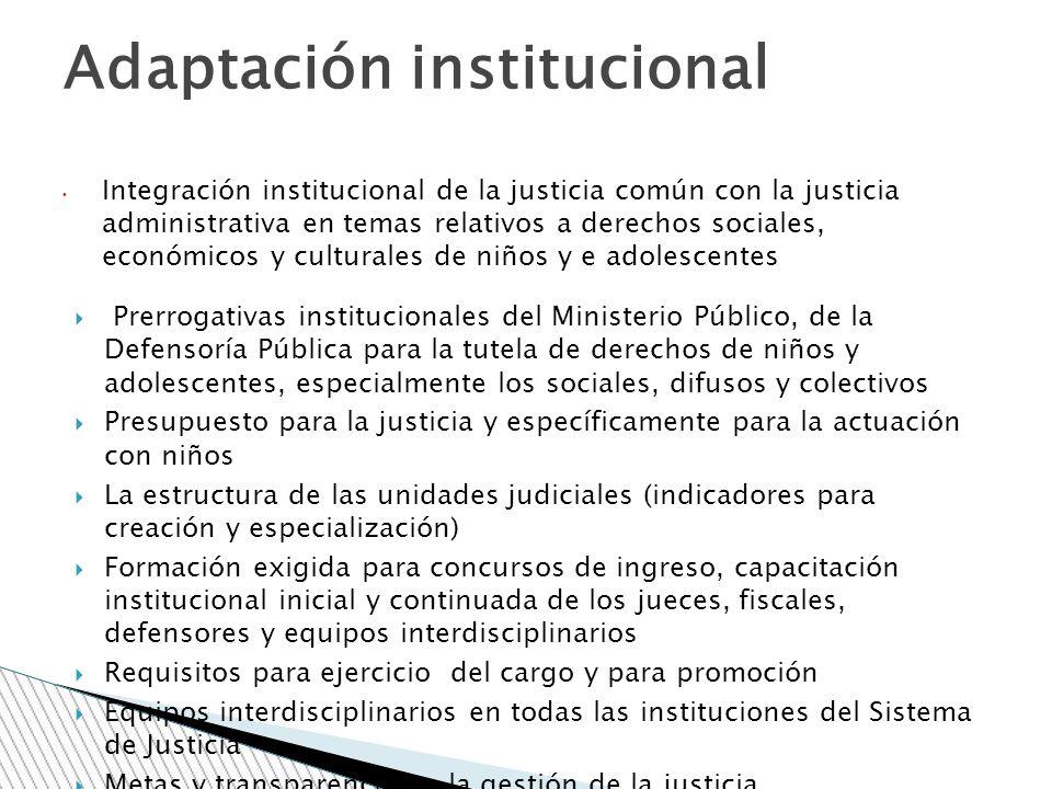 Integración institucional de la justicia común con la justicia administrativa en temas relativos a derechos sociales, económicos y culturales de niños