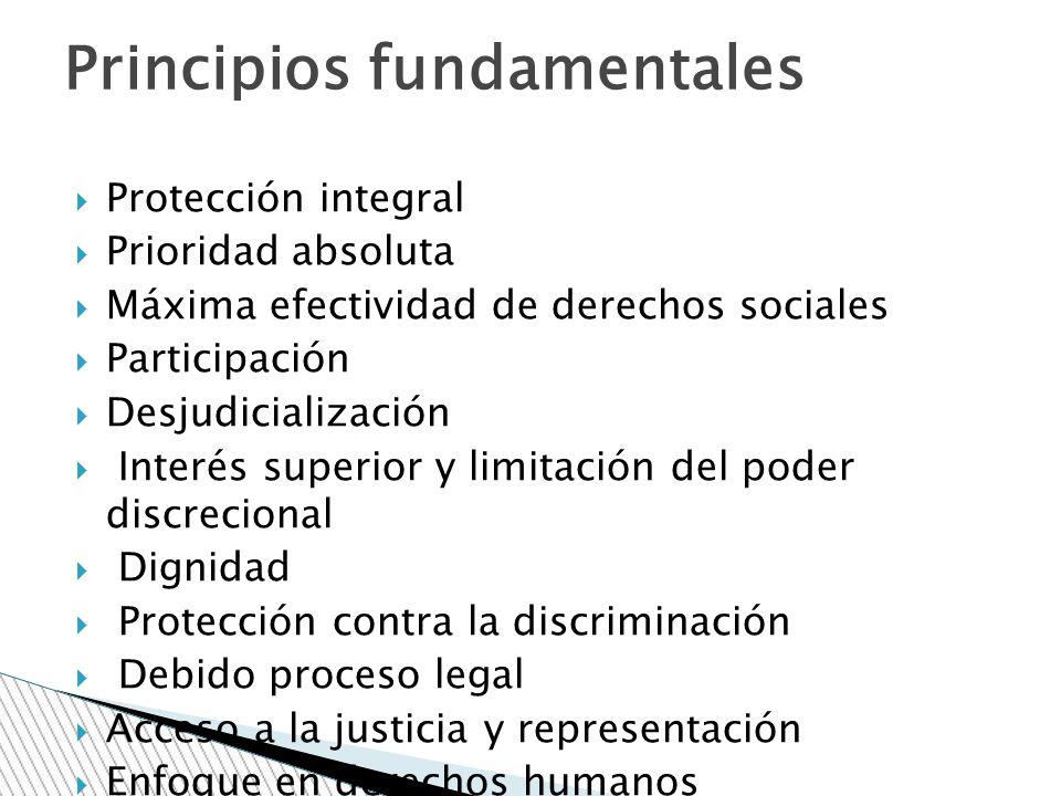 Protección integral Prioridad absoluta Máxima efectividad de derechos sociales Participación Desjudicialización Interés superior y limitación del pode