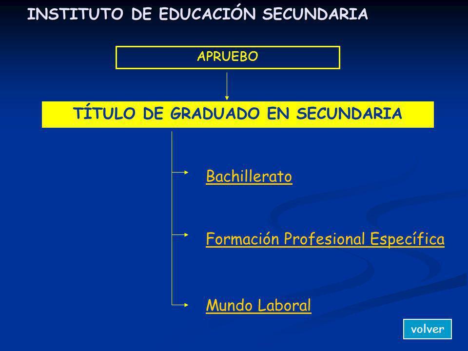 INSTITUTO DE EDUCACIÓN SECUNDARIA APRUEBO Mundo Laboral TÍTULO DE GRADUADO EN SECUNDARIA Formación Profesional Específica Bachillerato volver