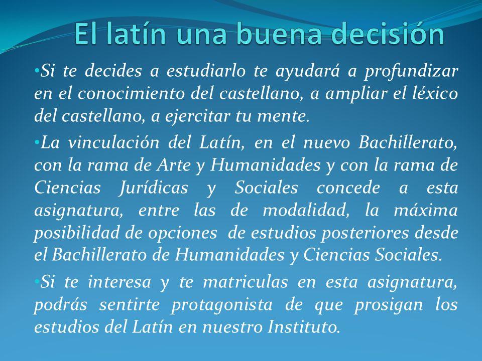 Si te decides a estudiarlo te ayudará a profundizar en el conocimiento del castellano, a ampliar el léxico del castellano, a ejercitar tu mente. La vi