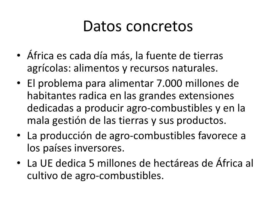 Datos concretos África es cada día más, la fuente de tierras agrícolas: alimentos y recursos naturales. El problema para alimentar 7.000 millones de h