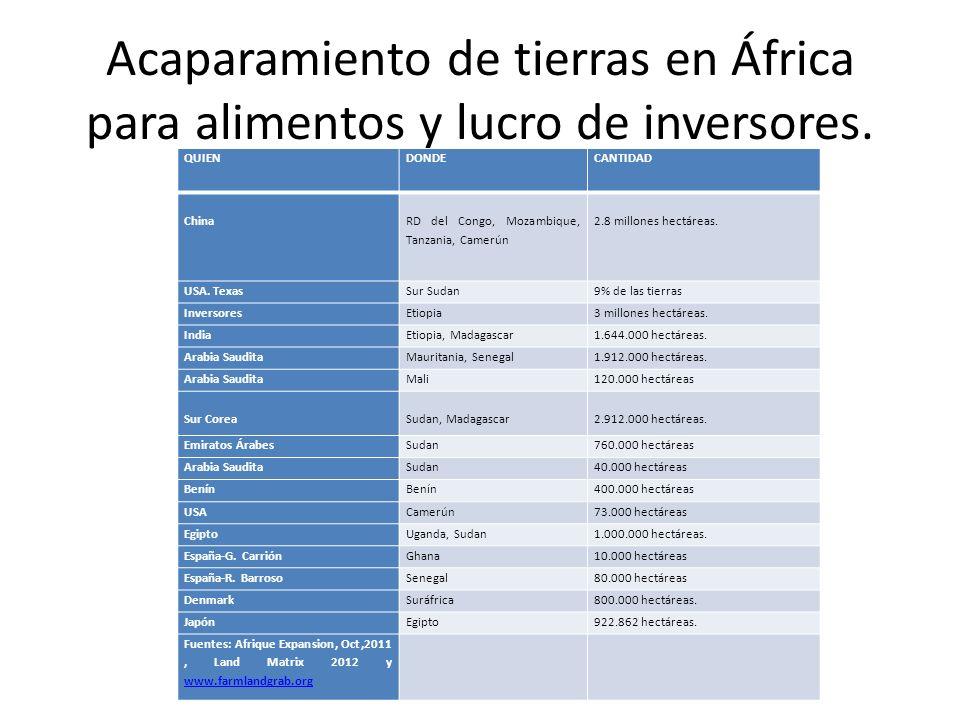 Acaparamiento de tierras en África para alimentos y lucro de inversores. QUIEN DONDECANTIDAD China RD del Congo, Mozambique, Tanzania, Camerún 2.8 mil