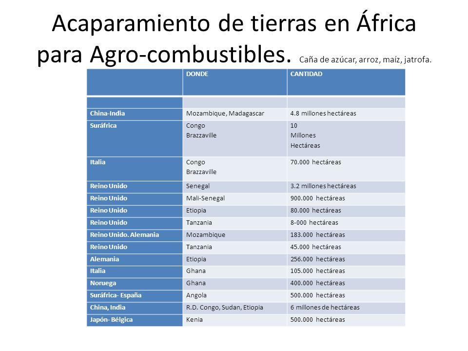 Acaparamiento de tierras en África para Agro-combustibles. Caña de azúcar, arroz, maíz, jatrofa. DONDECANTIDAD China-IndiaMozambique, Madagascar4.8 mi