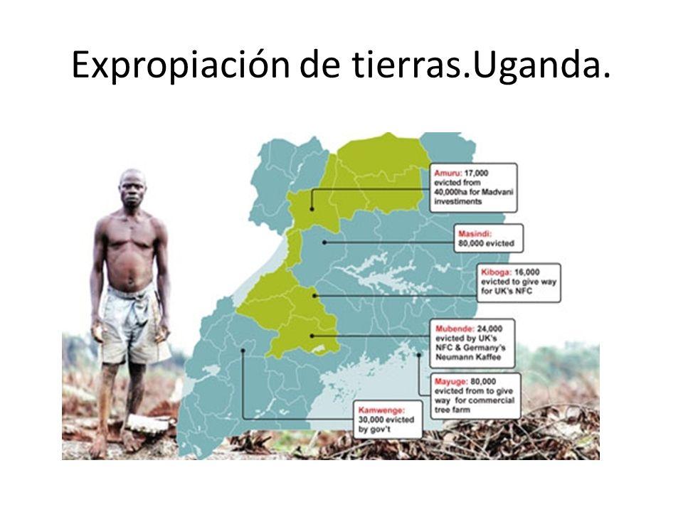 Expropiación de tierras.Uganda.
