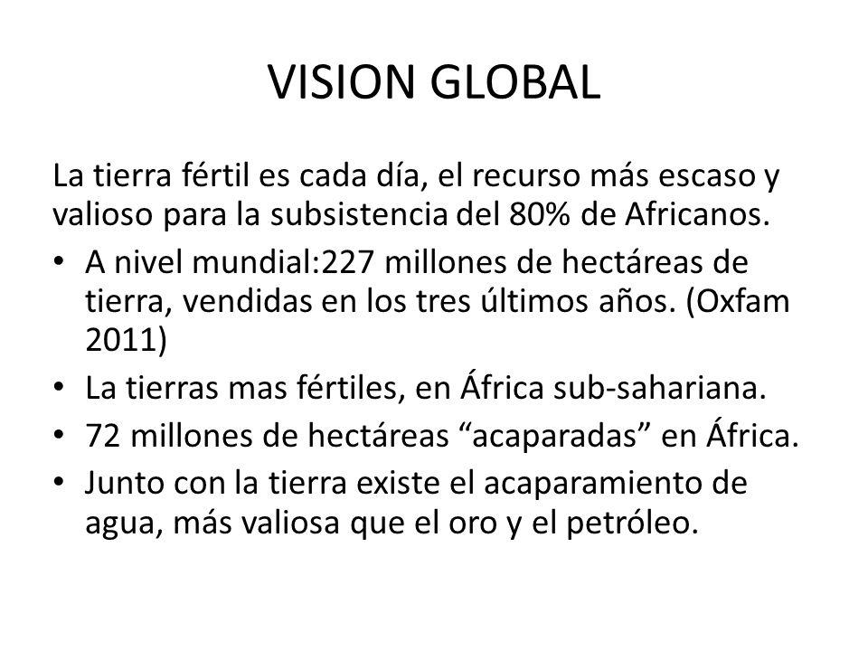 VISION GLOBAL La tierra fértil es cada día, el recurso más escaso y valioso para la subsistencia del 80% de Africanos. A nivel mundial:227 millones de
