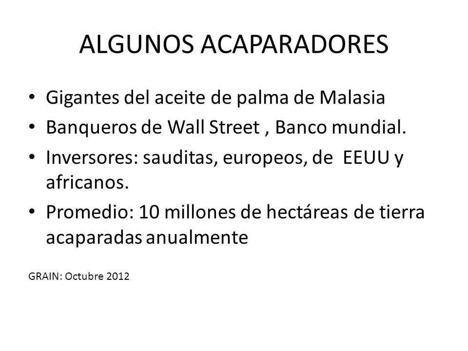 ALGUNOS ACAPARADORES Gigantes del aceite de palma de Malasia Banqueros de Wall Street, Banco mundial. Inversores: sauditas, europeos, de EEUU y africa