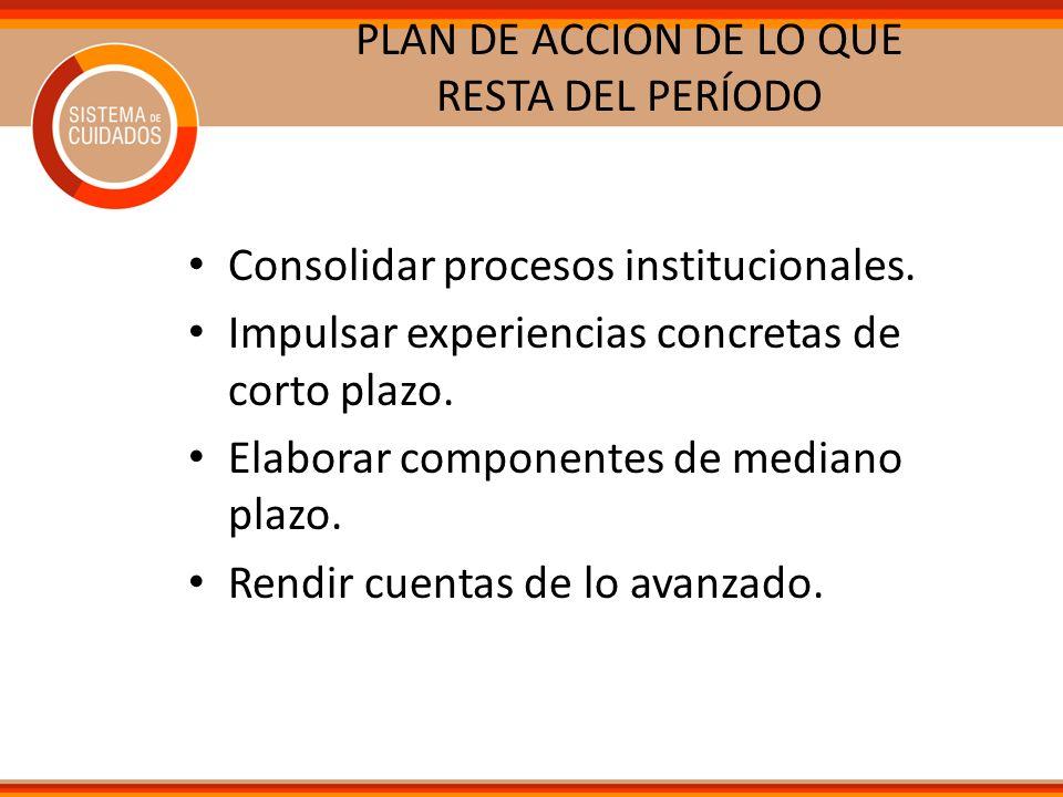 PLAN DE ACCION DE LO QUE RESTA DEL PERÍODO Consolidar procesos institucionales. Impulsar experiencias concretas de corto plazo. Elaborar componentes d