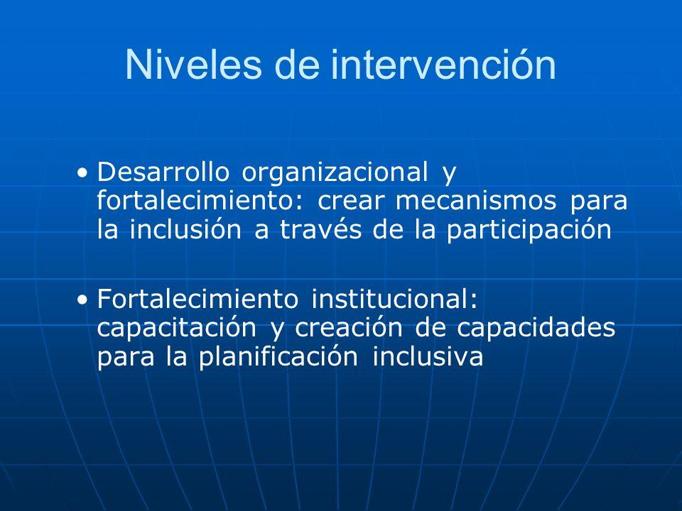 Niveles de intervención Desarrollo organizacional y fortalecimiento: crear mecanismos para la inclusión a través de la participación Fortalecimiento i