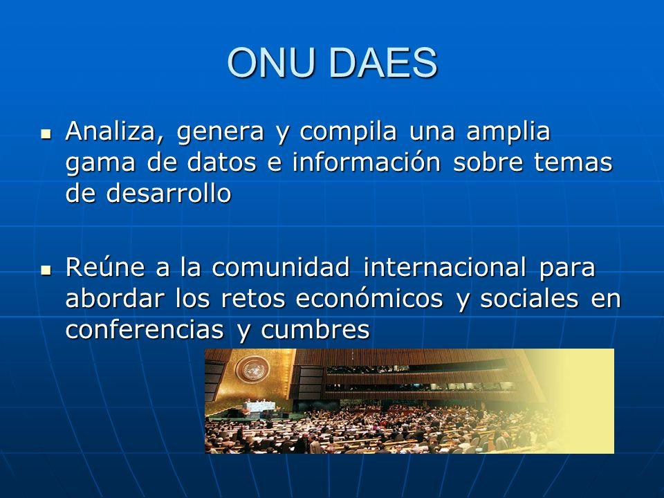 ONU DAES Analiza, genera y compila una amplia gama de datos e información sobre temas de desarrollo Analiza, genera y compila una amplia gama de datos
