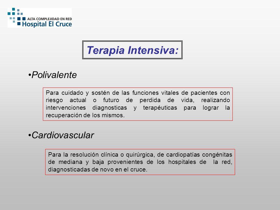 Terapia Intensiva: Polivalente Cardiovascular Para cuidado y sostén de las funciones vitales de pacientes con riesgo actual o futuro de perdida de vid