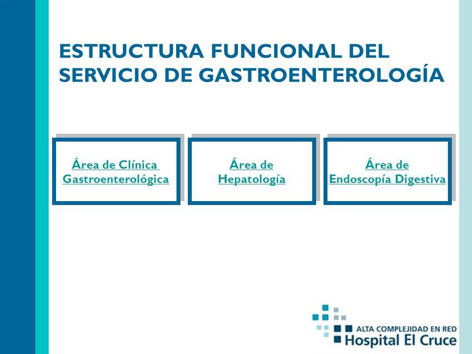 Área de Clínica Gastroenterológica Área de Clínica Gastroenterológica ESTRUCTURA FUNCIONAL DEL SERVICIO DE GASTROENTEROLOGÍA Área de Hepatología Área de Hepatología Área de Endoscopía Digestiva Área de Endoscopía Digestiva