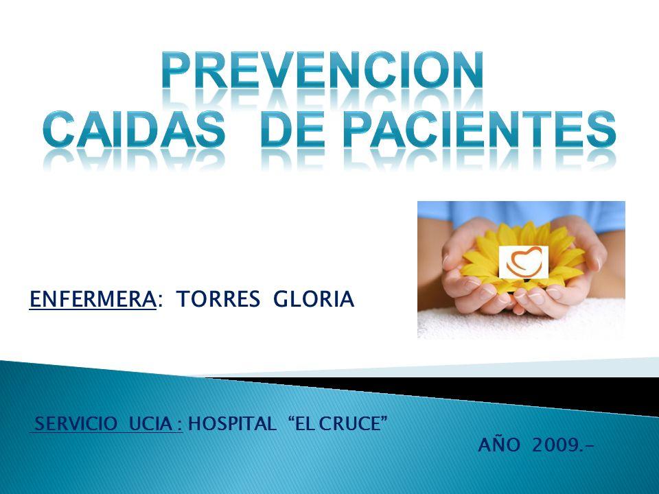 ENFERMERA: TORRES GLORIA SERVICIO UCIA : HOSPITAL EL CRUCE AÑO 2009.-