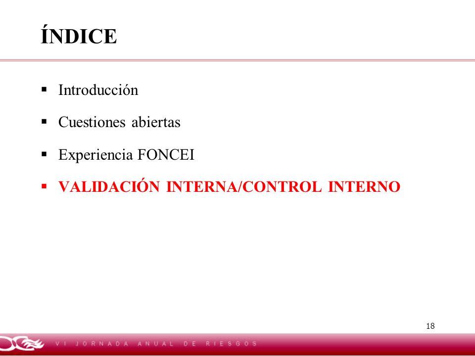 18 ÍNDICE Introducción Cuestiones abiertas Experiencia FONCEI VALIDACIÓN INTERNA/CONTROL INTERNO