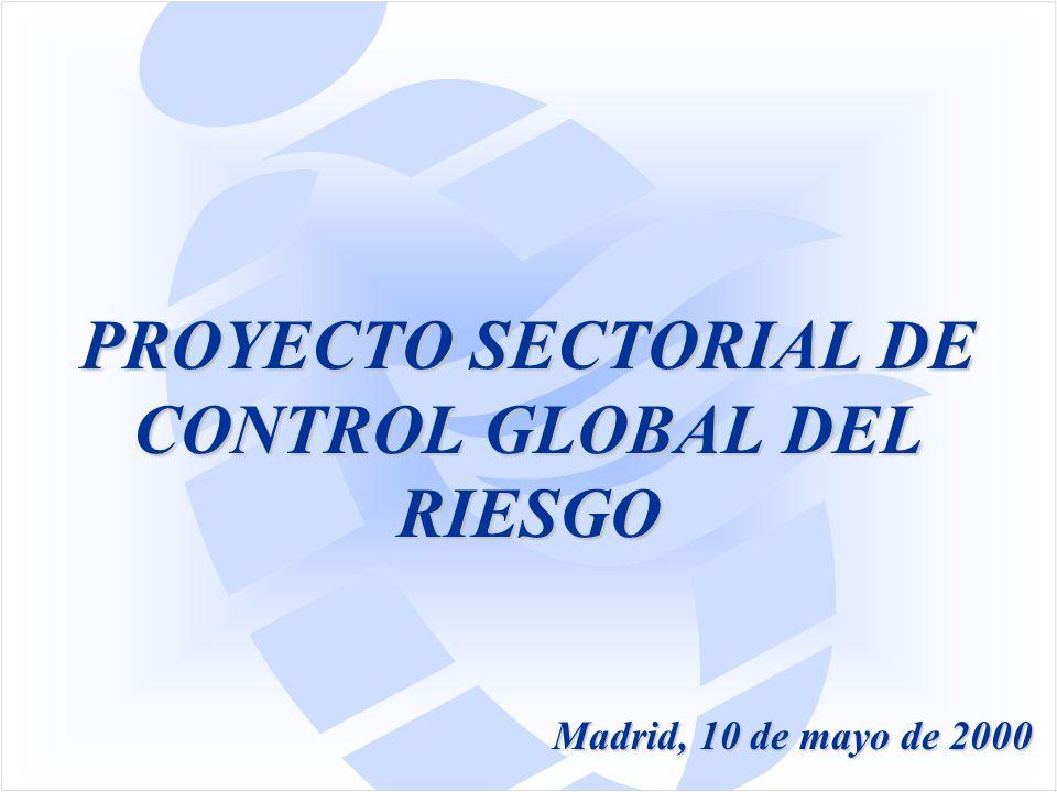 PROYECTO SECTORIAL DE CONTROL GLOBAL DEL RIESGO Madrid, 10 de mayo de 2000