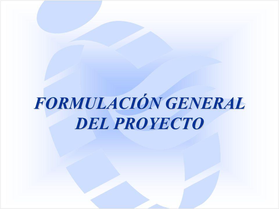 FORMULACIÓN GENERAL DEL PROYECTO