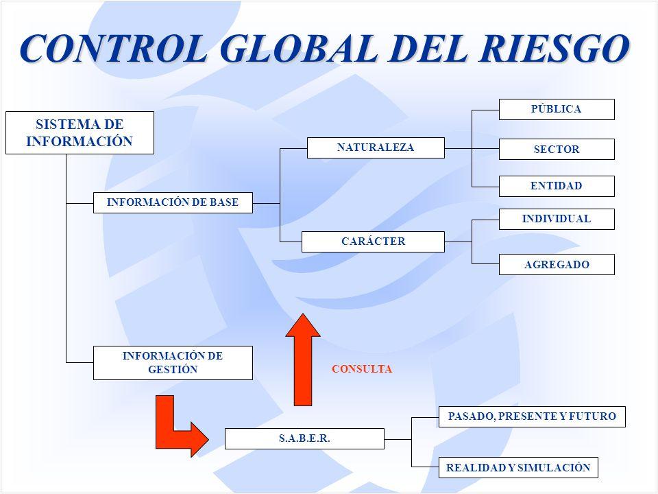 CONTROL GLOBAL DEL RIESGO SISTEMA DE INFORMACIÓN INFORMACIÓN DE GESTIÓN INFORMACIÓN DE BASE NATURALEZA CARÁCTER PÚBLICA SECTOR ENTIDAD INDIVIDUAL AGREGADO CONSULTA S.A.B.E.R.