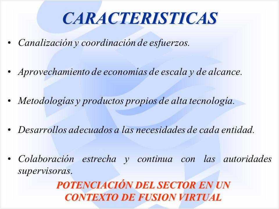 CARACTERISTICAS Canalización y coordinación de esfuerzos.