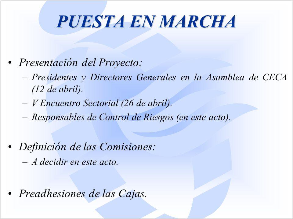 PUESTA EN MARCHA Presentación del Proyecto: –Presidentes y Directores Generales en la Asamblea de CECA (12 de abril).