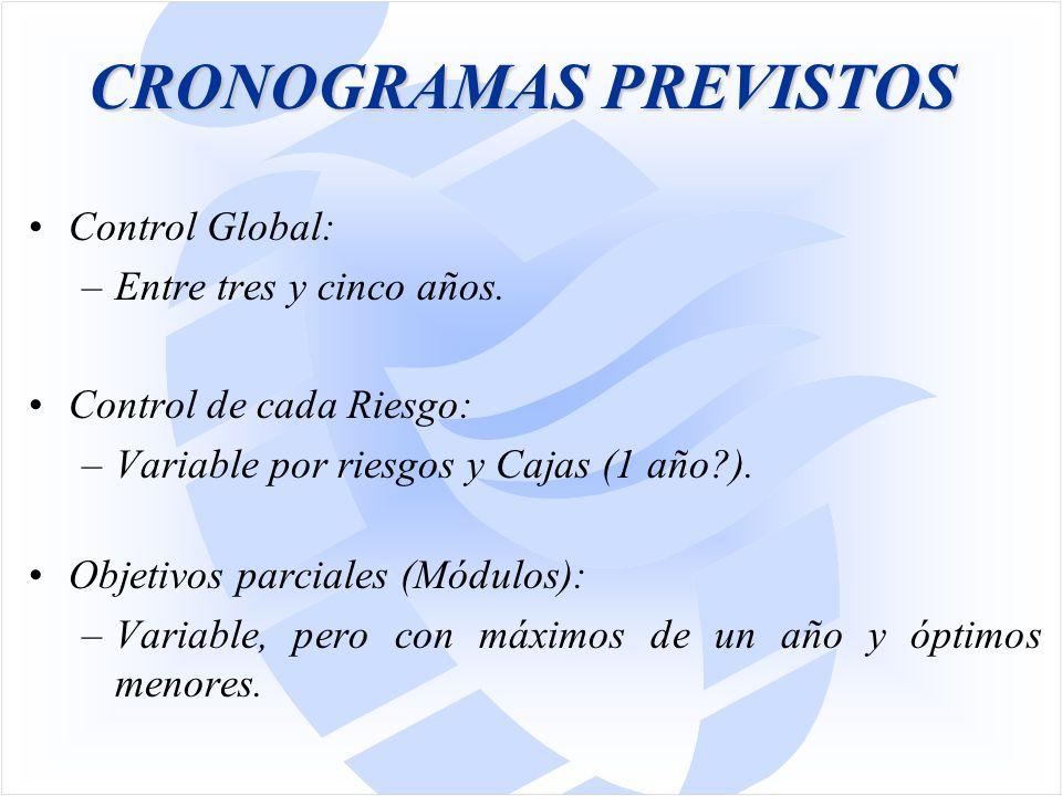 CRONOGRAMAS PREVISTOS Control Global: –Entre tres y cinco años.