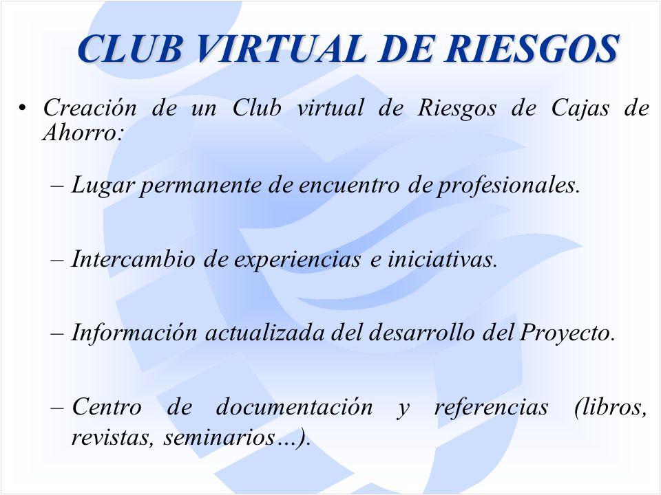 CLUB VIRTUAL DE RIESGOS Creación de un Club virtual de Riesgos de Cajas de Ahorro: –Lugar permanente de encuentro de profesionales.
