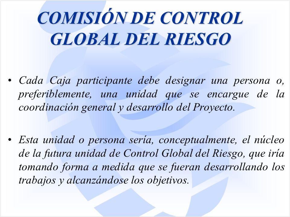 COMISIÓN DE CONTROL GLOBAL DEL RIESGO Cada Caja participante debe designar una persona o, preferiblemente, una unidad que se encargue de la coordinación general y desarrollo del Proyecto.