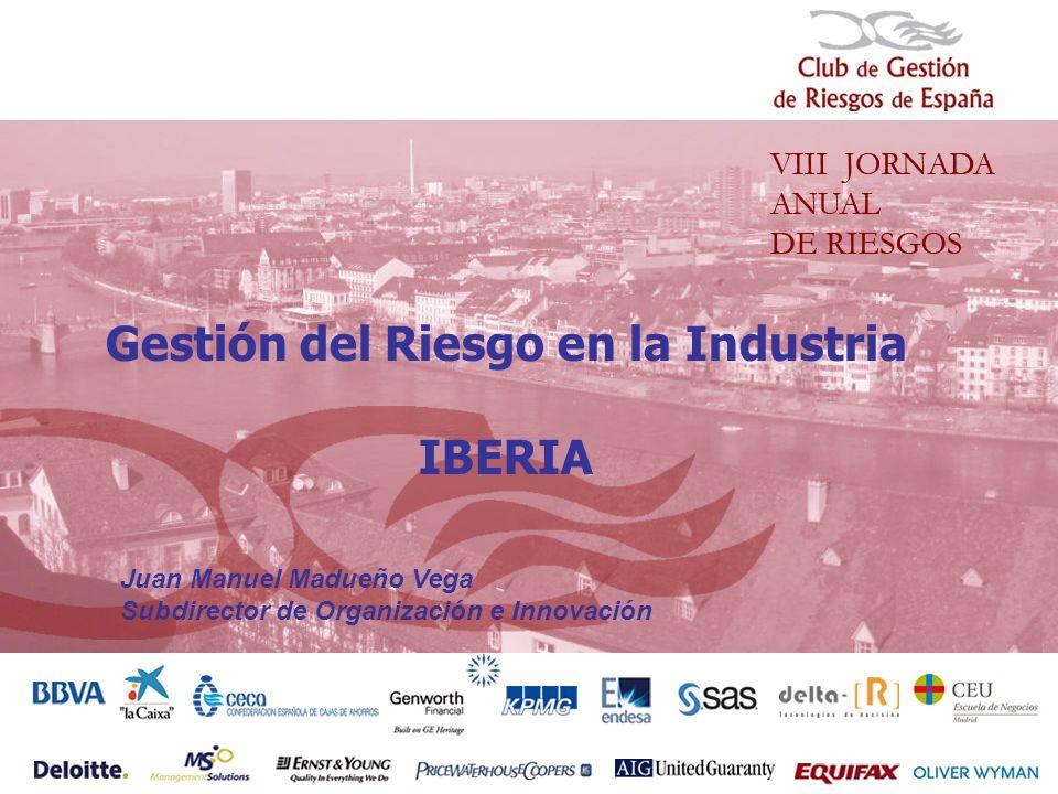 Gestión del Riesgo en la Industria IBERIA Juan Manuel Madueño Vega Subdirector de Organización e Innovación