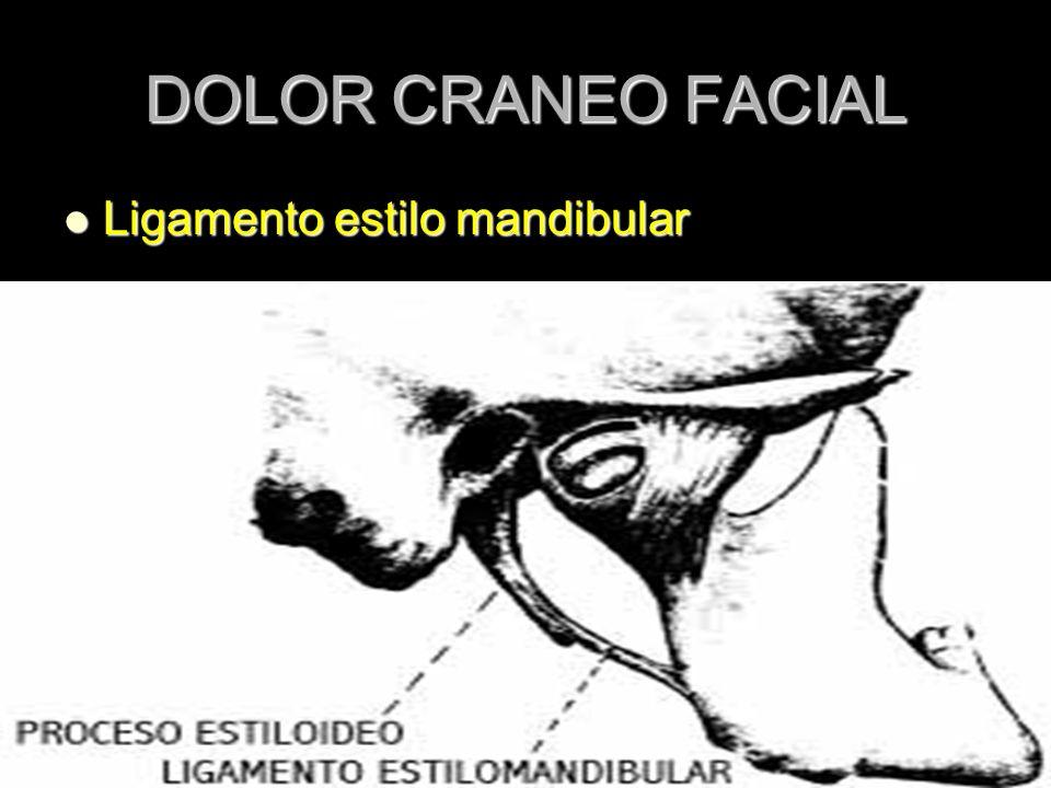 DOLOR CRANEO FACIAL Ligamento estilo mandibular Ligamento estilo mandibular
