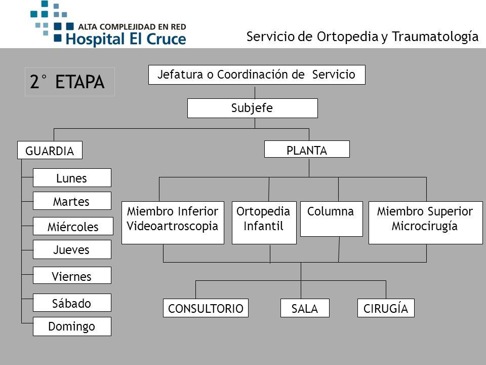 Jefatura o Coordinación de Servicio GUARDIA Subjefe Ortopedia Infantil ColumnaMiembro Superior Microcirugía Miembro Inferior Videoartroscopia PLANTA L