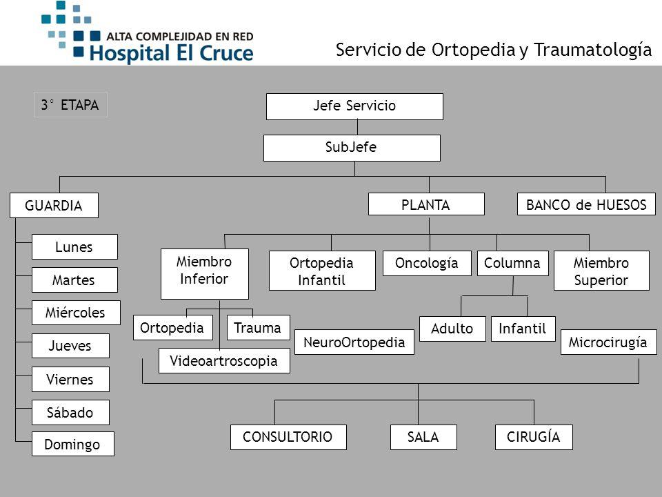 Jefe Servicio GUARDIA SubJefe Ortopedia Infantil ColumnaMiembro Superior Miembro Inferior PLANTA Lunes Martes Miércoles Jueves Viernes Sábado Domingo