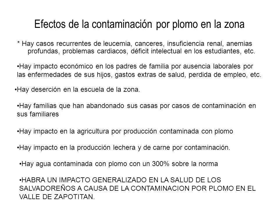 Efectos de la contaminación por plomo en la zona * Hay casos recurrentes de leucemia, canceres, insuficiencia renal, anemias profundas, problemas card