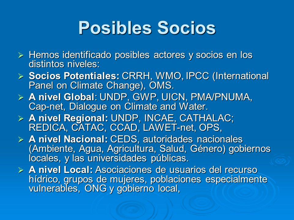 Posibles Socios Hemos identificado posibles actores y socios en los distintos niveles: Hemos identificado posibles actores y socios en los distintos n