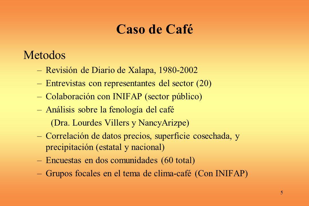 5 Caso de Café Metodos –Revisión de Diario de Xalapa, 1980-2002 –Entrevistas con representantes del sector (20) –Colaboración con INIFAP (sector público) –Análisis sobre la fenología del café (Dra.