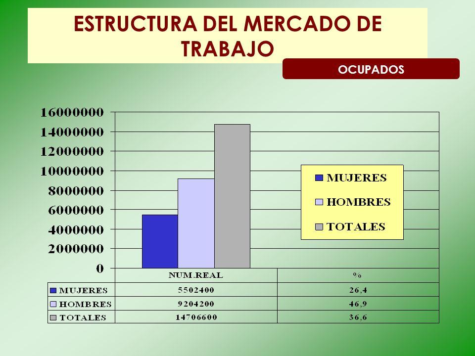 ESTRUCTURA DEL MERCADO DE TRABAJO OCUPADOS