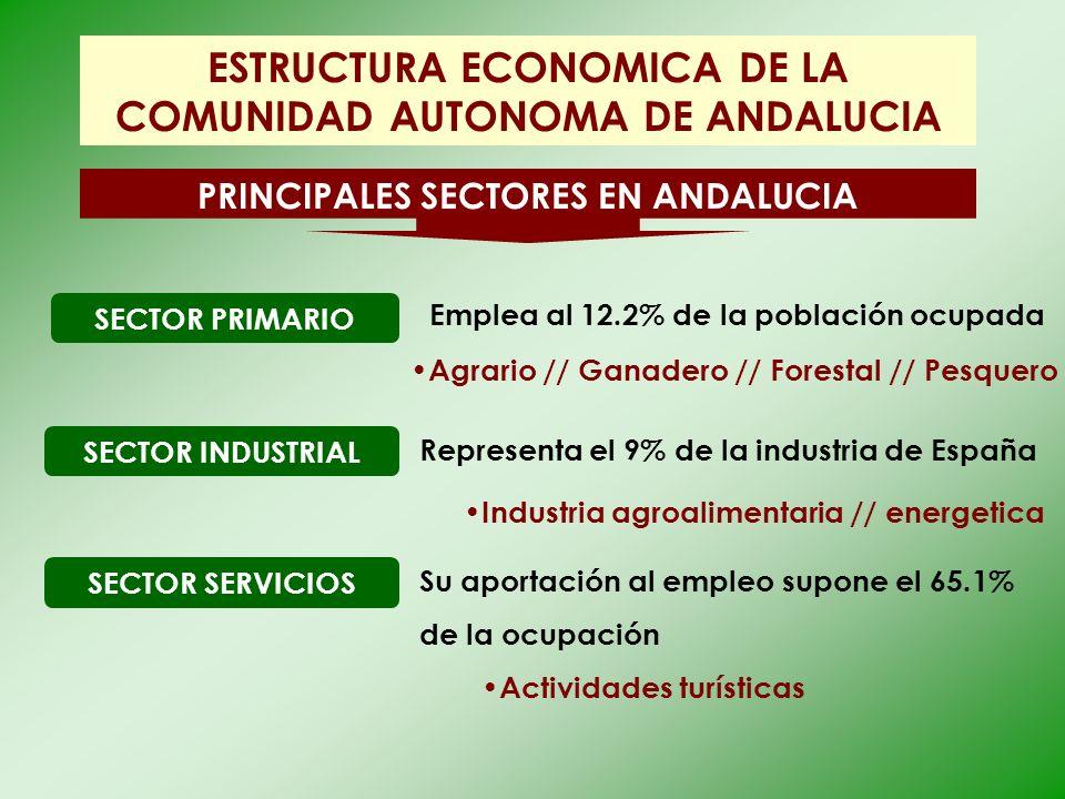 ESTRUCTURA ECONOMICA DE LA COMUNIDAD AUTONOMA DE ANDALUCIA PRINCIPALES SECTORES EN ANDALUCIA SECTOR PRIMARIO Agrario // Ganadero // Forestal // Pesque