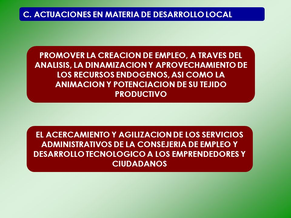 C. ACTUACIONES EN MATERIA DE DESARROLLO LOCAL PROMOVER LA CREACION DE EMPLEO, A TRAVES DEL ANALISIS, LA DINAMIZACION Y APROVECHAMIENTO DE LOS RECURSOS