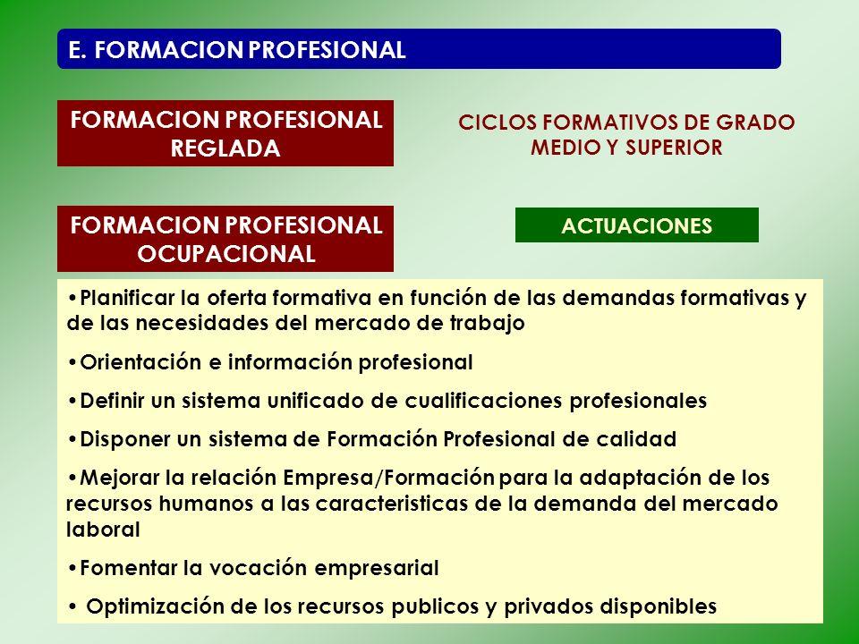E. FORMACION PROFESIONAL FORMACION PROFESIONAL REGLADA CICLOS FORMATIVOS DE GRADO MEDIO Y SUPERIOR FORMACION PROFESIONAL OCUPACIONAL ACTUACIONES Plani