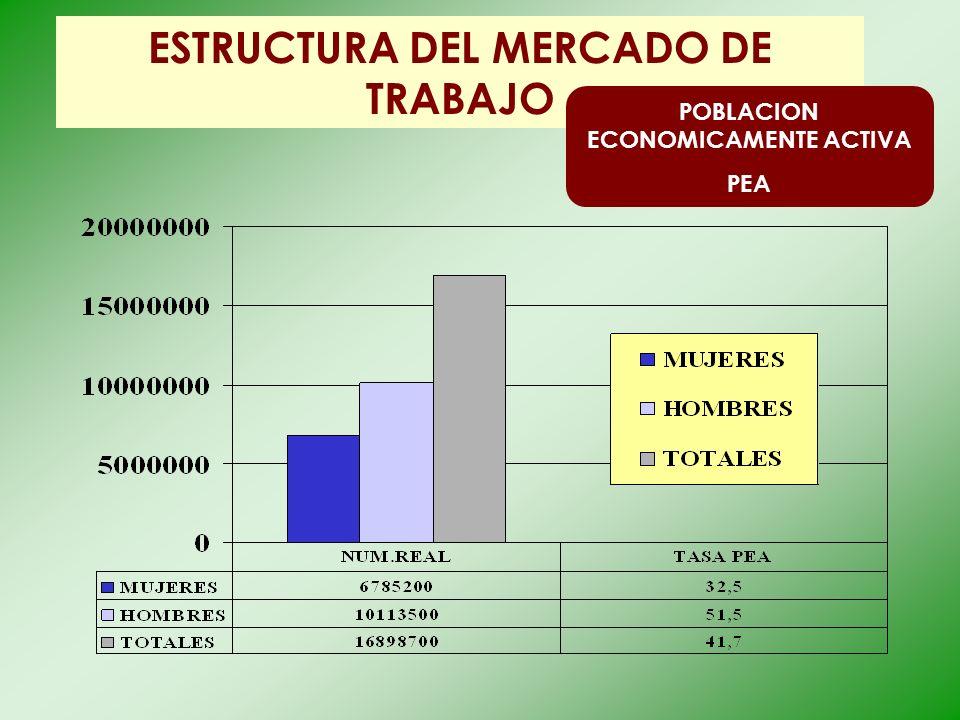 ESTRUCTURA DEL MERCADO DE TRABAJO POBLACION ECONOMICAMENTE ACTIVA PEA