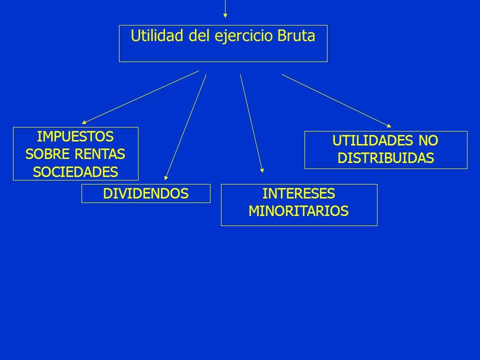 Utilidad del ejercicio Bruta IMPUESTOS SOBRE RENTAS SOCIEDADES DIVIDENDOSINTERESES MINORITARIOS UTILIDADES NO DISTRIBUIDAS