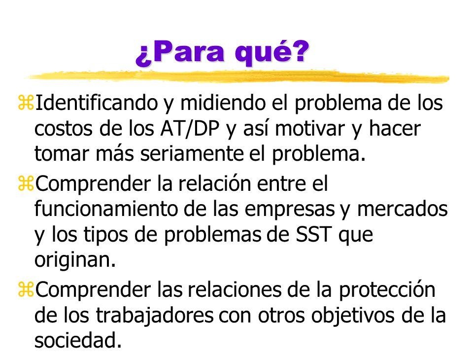 ¿Para qué? zIdentificando y midiendo el problema de los costos de los AT/DP y así motivar y hacer tomar más seriamente el problema. zComprender la rel