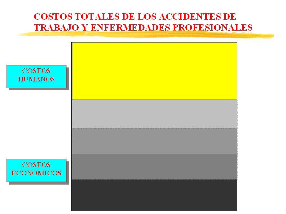 MECANISMOS DE INTERNALIZACION zDemandas de compensación de daños ante los tribunales.
