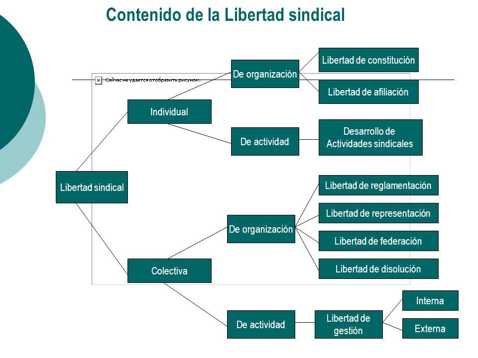Perspectivas para mejorar la defensa internacional de la libertad sindical Unificación y reforzamiento del sindicalismo internacional: CSI y Federaciones Internacionales.