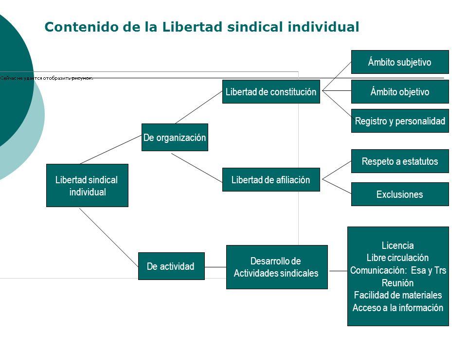 Libertad sindical colectiva De organización De actividad Libertad de reglamentación Libertad de disolución Libertad de representación Libertad de federación Libertad de gestión Interna Libertad sindical Huelga Negociación colectiva Externa